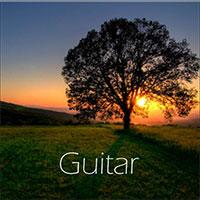 البوم موسيقى جيتار