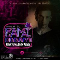 Odamy Remix album
